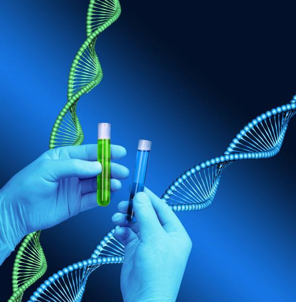 gene therapy, stem cells, heart failure, mutations, Mount Sinai, Hajjar