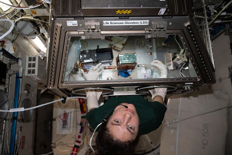 "Astronaut Jessica Meir ""feeds"" a set of the University of Washington's engineered heart tissues (inside the green-topped case at center) riding aboard the International Space Station as part of a test of micro-gravity on heart health. Image courtesy of NASA."