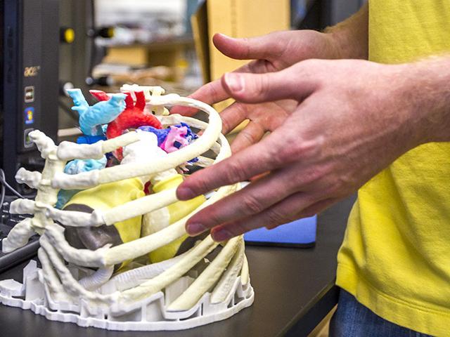 Advanced Visualization Artificial Hear Heart Repair Arizona State University