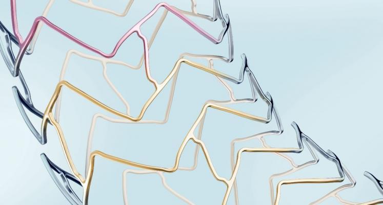 The stent struts of the Biotronik Orsiro stent.