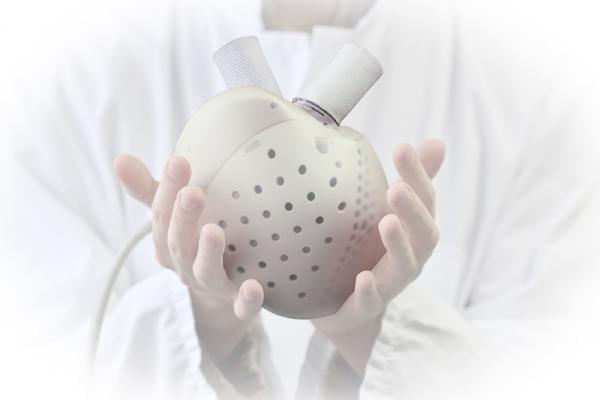 The Carmat artificial heart
