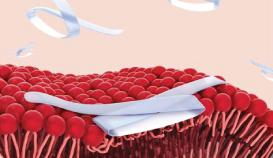 Mast Therapeutics Failure MST-188 Clinical Study Pharmaceuticals