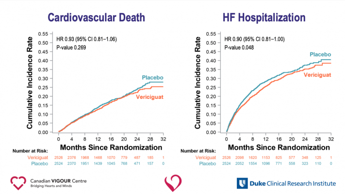 Patients with worsening heart failure and reduced ejection fraction who received the investigational drug vericiguat had a significantly lower rate of cardiovascular death or heart failure hospitalization compared with those receiving a placebo, based on research presented at the American College of Cardiology's Annual Scientific Session Together with World Congress of Cardiology (ACC.20/WCC) #ACC20/#WCCardio