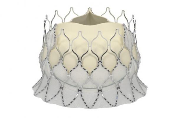 Edwards Lifesciences Centera self expanding transcatheter (TAVR) valve