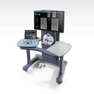 Hansen Medical, Magellan Robotic System, New York New Jersey metro area, first, Holy Name Medical Center