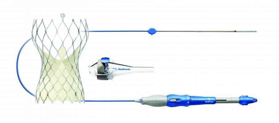 Medtronic, CoreValve Evolut R, TAVR system, 34 mm valve, FDA approval, largest in the U.S.