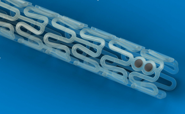 bioresorbable stents, dissolving stents, Absorb stent, BVS