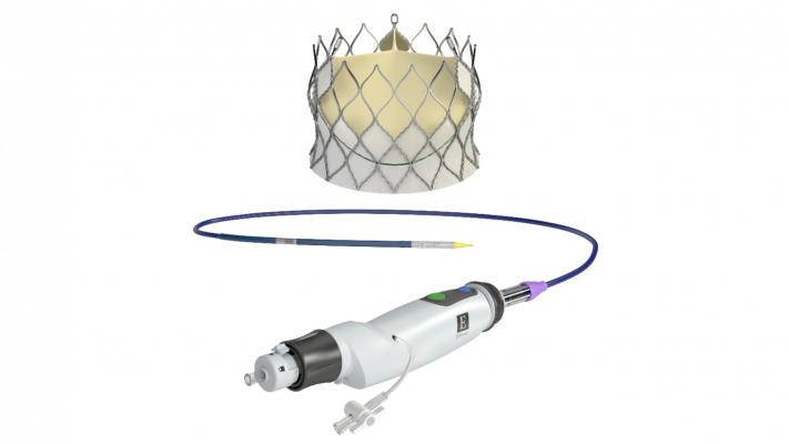 Edwards Lifesciences Centera self expanding transcatheter (TAVR) valve has been approved with CE mark for use in Europe.