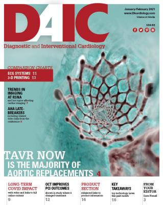 The January-February 2021 digital issue of DAIC magazine. Dave Fornell is the editor