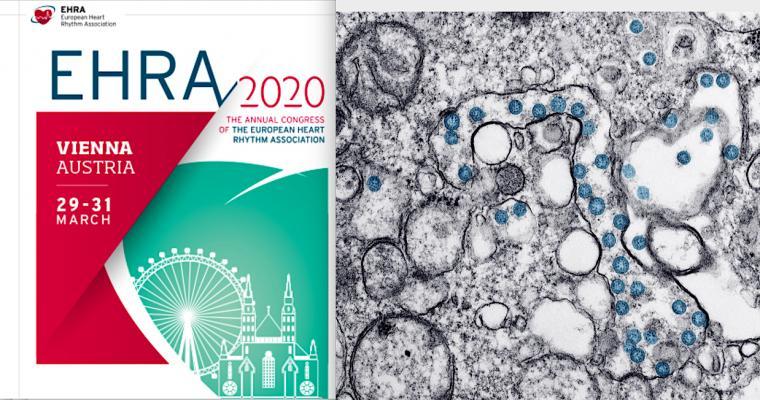 The European Heart Rhythm Association (EHRA) electrophysiology (EP) annual meeting cancelled due to coronavirus. #COVID19 #coronavirus #2019nCoV