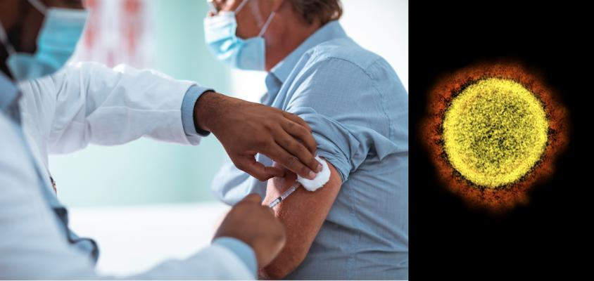 Vaccinating patients against the flu can go a long way to helping cardiology patients stay healthy and out of the hospital during the COVID-19 pandemic, freeing up beds for COVID patients. Left photo, Getty Images, right image of COVID-19 virus from the NIH.