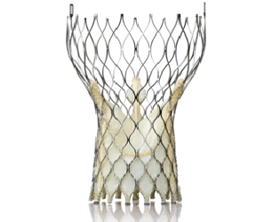 heart valve repair hybrid or cath lab structural heart tct medtronic corevalve