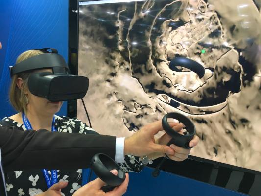 ASE 2019 virtual reality demonstration with TomTec which showed hot VR can be used to review complex 3-D anatomy and make more accurate measurements on cardiac imaging.