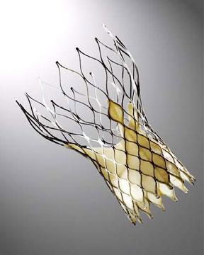 heart valve repair structural hybrid or medtronic corevalve edwards lifesciences