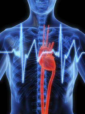 defibrillator, heart study