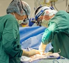 Scientists Show How Cells React to Injury From Open-Heart Surgery