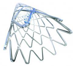 biosensors Biofreedom stent