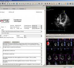Fujifilm, Synapse Cardiovascular, ACC 2016