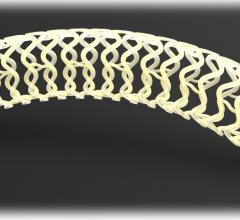 Fantom, Reva Medical, Rutgers, bioresorbable stents
