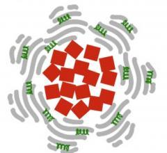 nanoparticles, stroke, tPA, blood clot, magnetic, MRI, antiplatelet