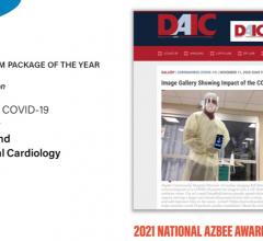 DAIC magazine won Overall Excellence Finalist/Multi-platform Package of the Year for its coverage of the COVID-19 Pandemic's Toll on Cardiology, National. The entry won an honor mention for its coverage of the COVID pandemic. Dave Fornell is the editor of DAIC.